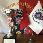19 Mayıs Gençlik Kupası Boks Şampiyonu 2013